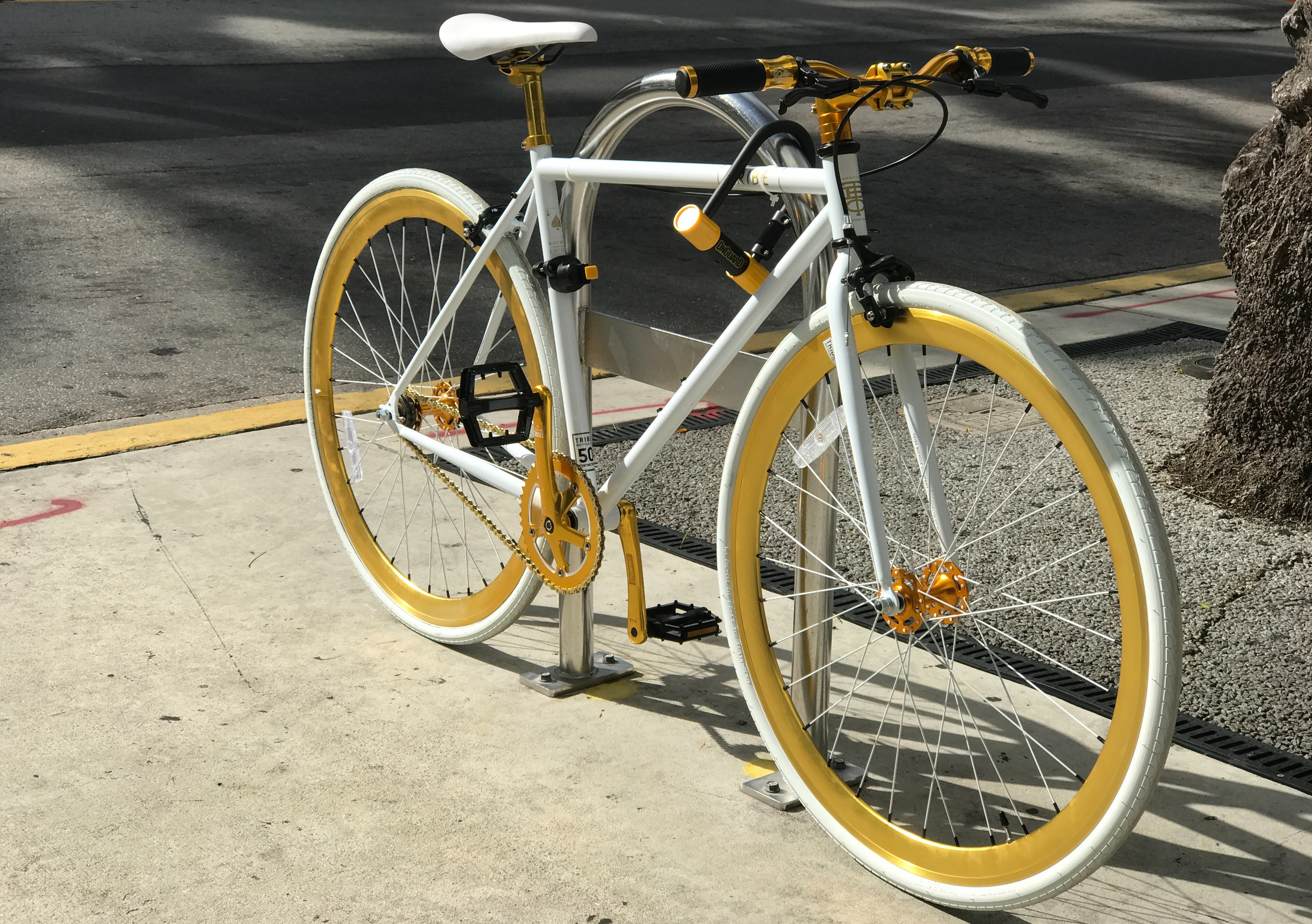 asphalt-bicycle-bike-255934